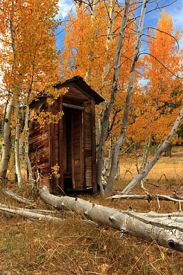 Mountain Royalty-Free and Rights-Managed Images - Outhouse In The Aspens by James Eddy