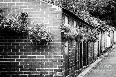 Outhouses All In A Row - Black And White Art Print