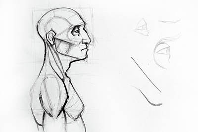 Dead Heads Drawing - Outline Drawing Sketch Of Side Profile Of A Human Male Head And Torso. Anatomy Illustration  by Oana Unciuleanu