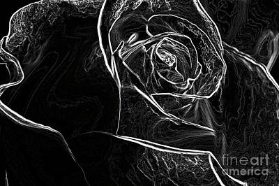 Photograph - Outline Of A Rose by Micah May