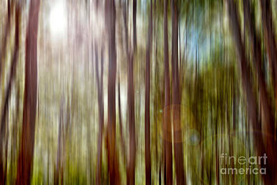Nature Abstract Photograph - Outnumbered by Az Jackson
