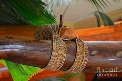 Photograph - Outrigger Rigging - 4 by Mary Deal