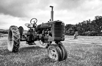 Outstanding In It's Field Black And White Art Print by Mel Steinhauer