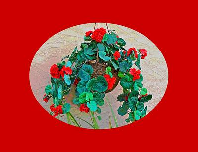 Oval Hanging Geraniums With Red Background Art Print