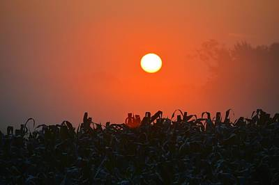 Photograph - Over Fields Of Corn by Bonfire Photography