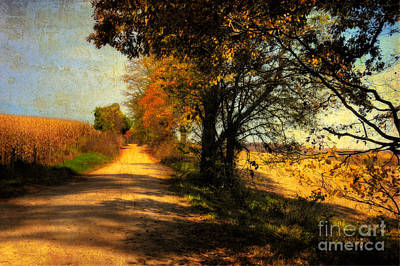 Country Lanes Digital Art - Over My Shoulder by Lois Bryan