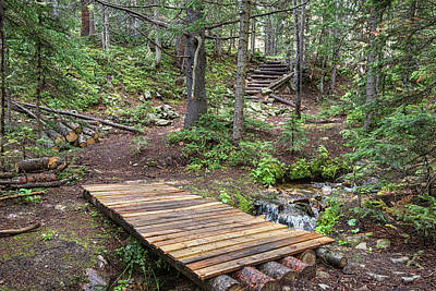 Photograph - Over The Bridge And Through The Woods by James BO Insogna