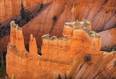 Photograph - Over The Edge At Bryce Point by Gordon Ripley