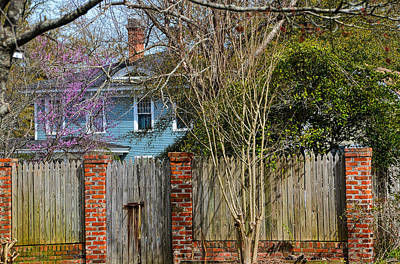 Photograph - Over The Fence by Linda Brown