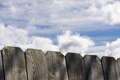 Over The Fence Art Print by Rebecca Cozart