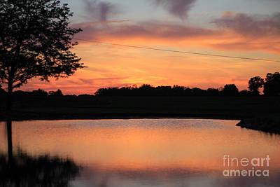 Photograph - Over The Pond  by Viviana  Nadowski