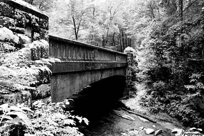 Photograph - Over The River And Through The Woods Black And White by Lisa Wooten