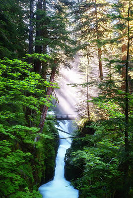 Photograph - Over The River And Through The Woods by Ryan Manuel