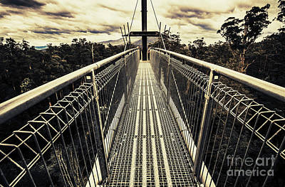 Photograph - Over The Tahune Treetops by Jorgo Photography - Wall Art Gallery