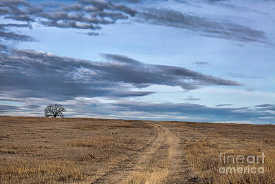 Photograph - Over Yonder by Jim Garrison