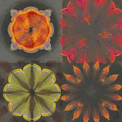 Overfrequent Bare Flower  Id 16165-012748-66990 Art Print