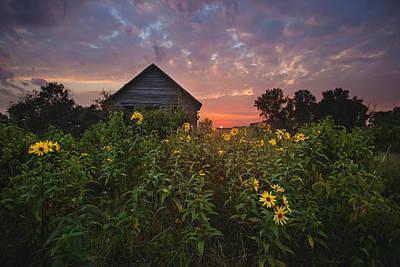 Photograph - Overgroen by Aaron J Groen
