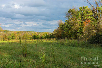 Photograph - Overgrown Autumn Countryside by Jennifer White