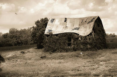 Photograph - Overgrown Barn by Karl Anderson