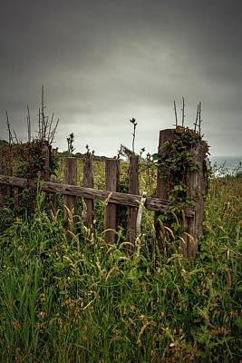 Photograph - Overgrown Coastal Fence - Mendocino Ca by Eleanor Caputo