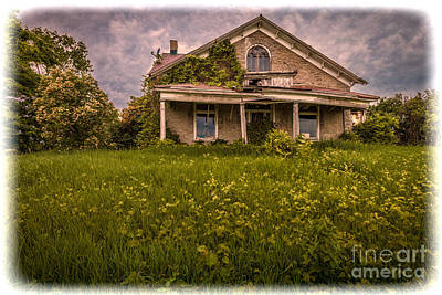 Photograph - Overgrown Grunge by Roger Monahan
