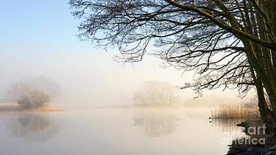 Overhang Esthwaite Water Lake District Art Print