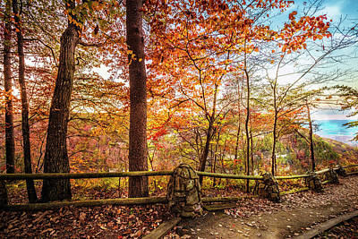 Photograph - Overlook At Cloudland Canyon by Debra and Dave Vanderlaan