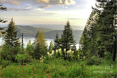 Overlook Art Print by Dave Hampton Photography