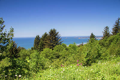 Photograph - Overlook From Highway 101 by Kunal Mehra