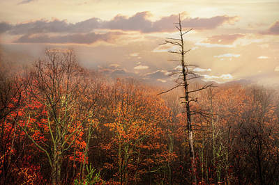 Photograph - Overlook On The Cherohala Skyway by Debra and Dave Vanderlaan