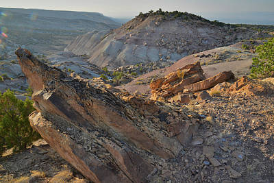 Photograph - Overlooking Bang's Canyon From Bentonite Site by Ray Mathis