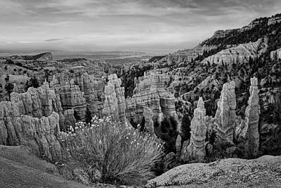Photograph - Overlooking Fairyland - Bryce by Nikolyn McDonald