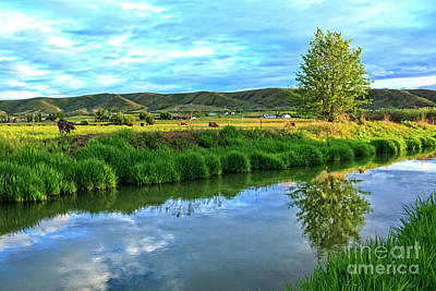 Overlooking Irrigation Canal Art Print