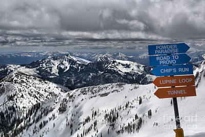 Paradise Road Photograph - Overlooking Mineral Basin by Adam Jewell
