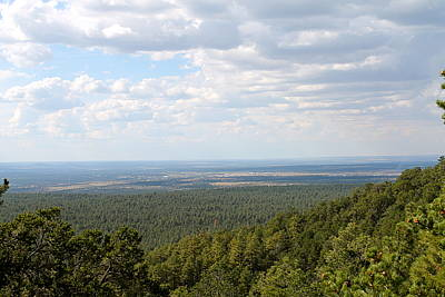 Overlooking Pinetop Art Print