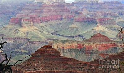 Photograph - Overlooking The Grand Canyon by Debby Pueschel
