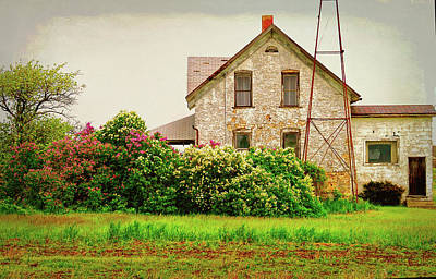 Photograph - Overlooking The Hedge by Susan Crossman Buscho