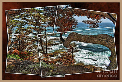 Photograph - Overlooking The Pacific Ocean From Fitzgerald Reserve  by Jim Fitzpatrick