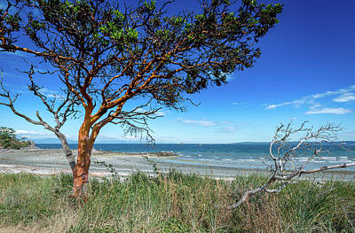 Photograph - Overlooking The Straits by Phil Rispin