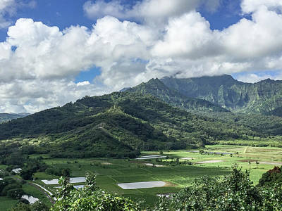 Photograph - Overlooking The Taro Fields by Teresa Wilson