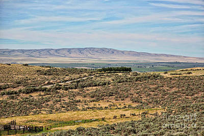 Photograph - Overlooking The Yakima Valley by Carol Groenen