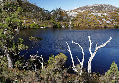 Photograph - Overlooking Wombat Pool by Nicholas Blackwell