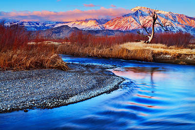 Photograph - Owens River And Eastern Sierra Sunrise by Nolan Nitschke