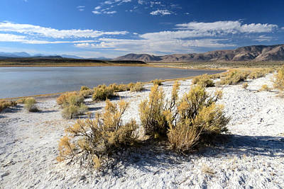 Photograph - Owens Valley by Frank Townsley