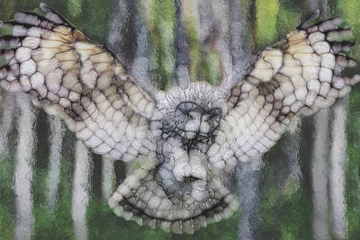 Painting - Owl 3 by Jack Zulli