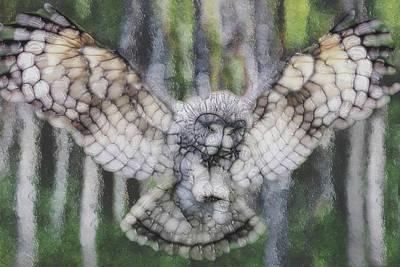 Owl 3 Art Print by Jack Zulli