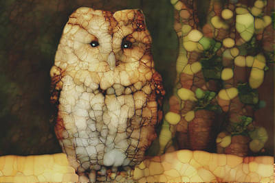 Cobwebs Painting - Owl 5 by Jack Zulli