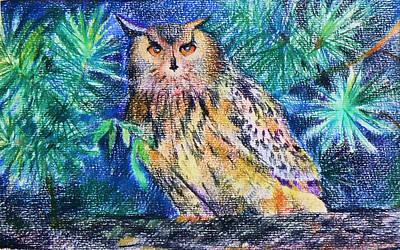 owl Art Print by Anastasia Michaels