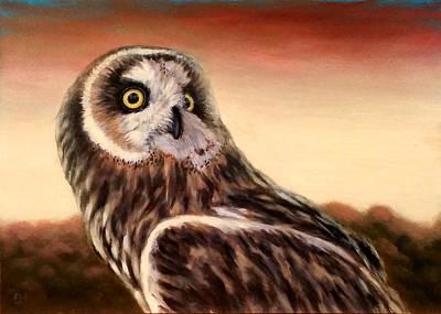 Owl At Sunset Art Print