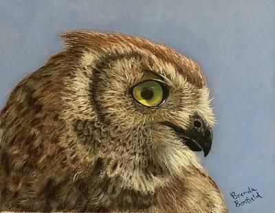 Pastel - Owl by Brenda Bonfield